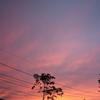 とっておきの秋の空と夕焼けを、また。