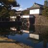 ネットで有名な日本人が、皇居の日の丸を燃やした