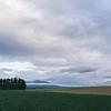 春色パレット~雨雲