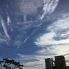 久しぶりの青い空と雲