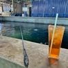 【完全保存版】クアラルンプールでエビ釣り マレーシアのエビ釣り堀情報まとめ。