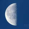 有明の月(月齢21.458)