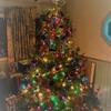 日本と海外のクリスマスの過ごし方の違い。アメリカのクリスマスを体験![アメリカ留学生活]