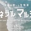 2021年夏の4連休(最終日)