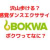 沢山歩ける?新感覚ダンスエクササイズ BOKWA って何?