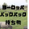 【海外旅行】ヨーロッパバックパック旅行-持ち物編