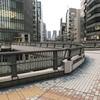 【歩道橋】昭和通りの歩道橋