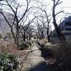 2020年1月22日(火)芝川CR - 見沼代用水東縁 - 芝川CR - 見沼代用水西縁 57.01km Part 1/2