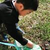 庭でモンシロチョウを捕まえたよ!!