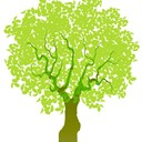 Treeone's Blog