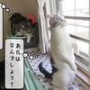 猫の道具 ~キャリーケース~