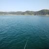 楽しい釣り♪ 2020秋第六回目の紀州釣り