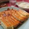 【餃子】宇都宮餃子と浜松餃子、また中国の餃子とどう違うの?