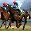 【フェアリーステークス2018】予想オッズ・出走馬分析〜荒れる3歳牝馬重賞