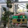 筑波実験植物園で写ルンです