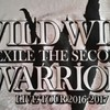 EXILE THE SECONDライブ神戸3日目に行ってきました! -  WILD WILD WARRIORS