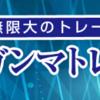 日経225オプション教材「Vガンマトレード塾」検証・レビュー