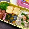 ヨメさん弁当〜麻婆豆腐・だし巻き・かぼちゃ煮〜