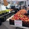 【グリーン・マーケット】オーガニック野菜や食材が売っているユニオン・スクエアーのグリーン・マーケット