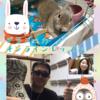 【初心者歓迎】大阪でのダラブッカ教室・レッスンなら【はまスタジオ】