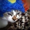 日本昔話  ちまお太郎の鬼退治