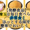 【発酵食品】味噌玉は毎日食べられる非常食!ほっとする味を簡単でおいしく!