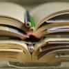 【ポイント解説付】超初心者がブログを始める際に読むべき5冊