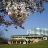 千葉県浦安市『若潮公園』動物ふれあい、交通公園、ミニ水族館等全てが無料の優良公園!!メロンパンは絶品🌟お出かけに最適Wow Cup!!