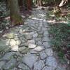 「太陽と緑の道」コース№7 白鶴美術館~五助堰堤~住吉道~(六甲最高峰)(7.3km)