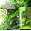 生活の中心の神様が道ばたに祀られていた 大分県国東市国見町竹田津