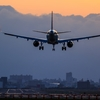 空の需要回復は2023年 それでも飛行機は飛び続ける ワクチン空輸はANA