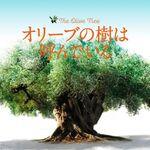 映画「オリーブの樹は呼んでいる」(ほぼネタバレ)寓話的趣きのあるシンプルで過剰さのないいい映画でした