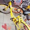 上海で、レンタル自転車❤(・Θ・)