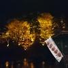 香嵐渓の紅葉はまっこと美しかった