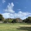 ワイキキから歩いて行けるオススメ観光スポット。ダイヤモンドヘッドと自然を満喫できるカピオラニ公園【赤ちゃん連れハワイ】