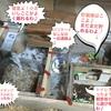 ハムスタ〜ヨモギちゃんの地下型巣箱