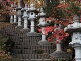 【地下鉄駅から徒歩15分】札幌の穴場紅葉スポット「紅櫻公園」で写真撮影