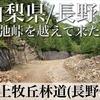 【動画】山梨県/長野県 川上牧丘林道(長野県側)