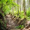 「SUUNTO TRAVERSE ALPHA」を使って岩湧山登山