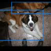 Open Image Dataset v4を使ってみる