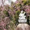 【京都】『正法寺』に行ってきました。 京都観光 京都旅行 国内旅行 社寺めぐり 京都の桜