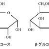 生物が行う化学反応 光合成と呼吸