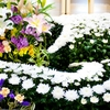 1分でわかる!家族葬の祭壇・生花・遺影・棺の準備