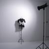ストロボの使い方、撮影方法を基礎解説!【ライティング初心者必見】