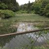 『東沢上池』静岡県掛川野池群バス釣り完全攻略マップ