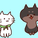 黒柴彼氏と白猫彼女