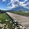 山中湖一周ジョギング