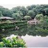 大井町~戸越公園ー便利なのか⁉️ー交通の便から検証します