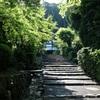 新緑に輝く京都で、ポタリングしてきた