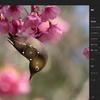 💻ASUS Chromebook Detachable CM3 + 🖼Lightroom